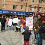 纽约藏人举牌抗议中共歪曲西藏问题大外宣入侵公立图书馆